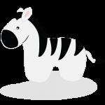 Zebra Colt