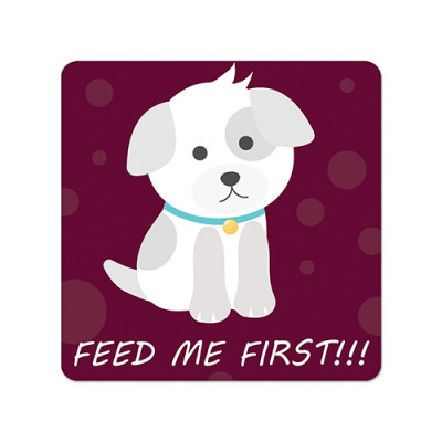 Fridge Magnet Square - Feed Me