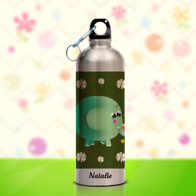 Single Lid Steel Bottle 750ml