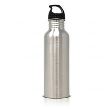 Fences Silver Bottle 750ml